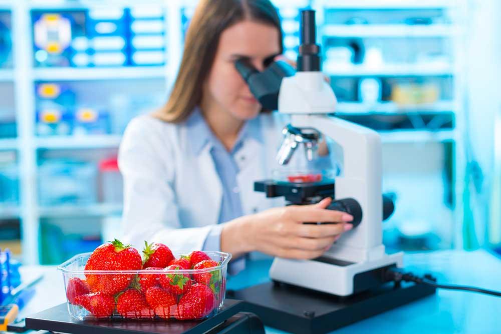 tecnólogo en alimentos